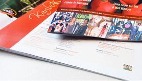 Stampa Tipografica per l' Ambasciata del Kenya